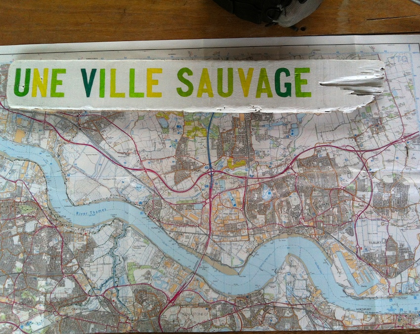 Map.VilleSauvage