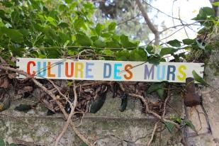 Culture.Murs